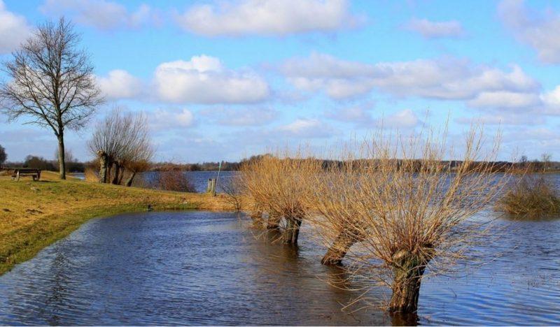 Contenidos para el sector de aguas