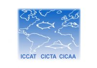 ONG GBYP-ICCAT